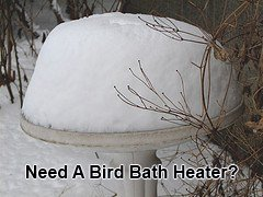 Using a bird bath heater to keep it snow and ice free.
