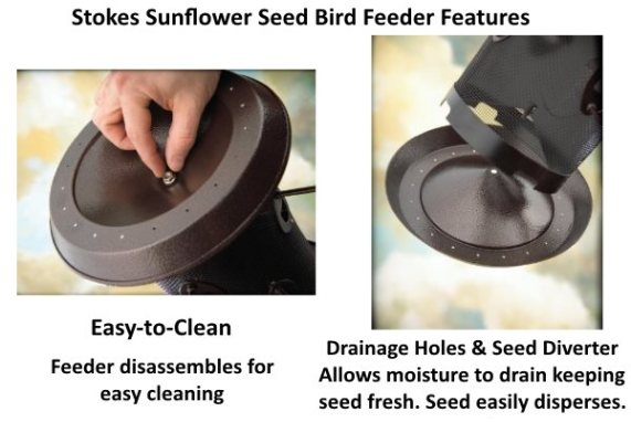 easy to clean sunflower seed feeder