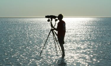 how to chose the best bird watching spotting scope