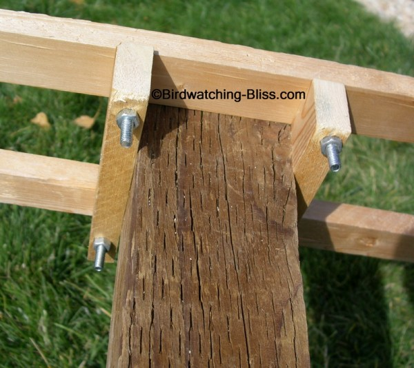 Building A Bird Feeder Post