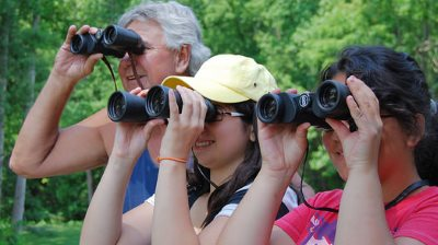 How to choose birding binoculars