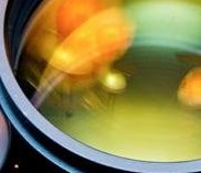 The different types of prism and lens coating for your binoculars.