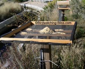 free platform bird feeder plans