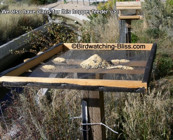 How To Make A Wooden Platform Bird Feeder