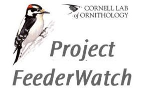 participate in Cornell Lab of Ornithology Project Feederwatch