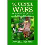 how to squirrel proof bird feeder