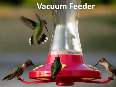 vacuum hummingbird feeder sometimes leaks
