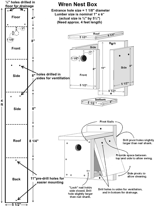 free wren birdhouse plans