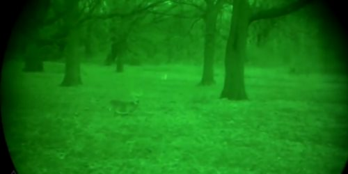 Gen 3 night vision binoculars