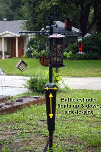 squirrel proof bird feeder pole and squirrel baffle