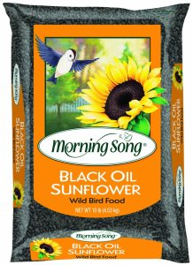 black oil sunflower seeds for bird feeders