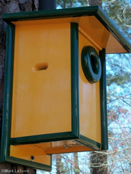 bleubird house hole guard