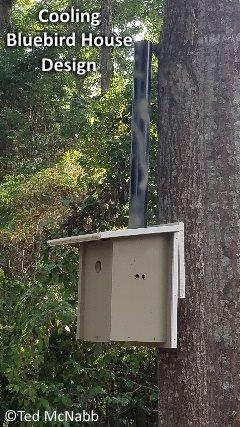 cooling bluebird nest box plans
