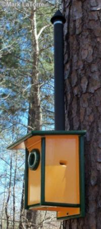bluebird house squirrel guard