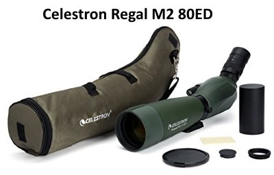 celestron regal m2 80ed spotting scope review