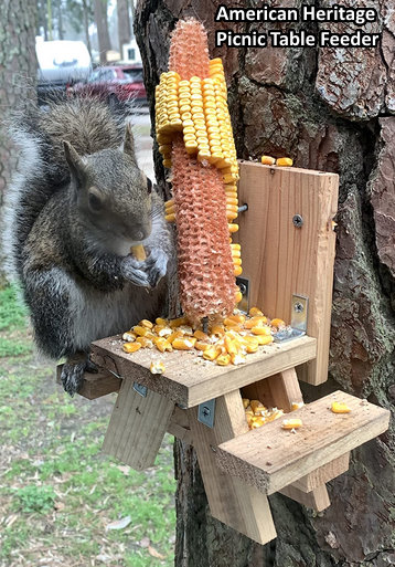corn squirrel feeder