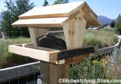 simple hopper bird feeder plans