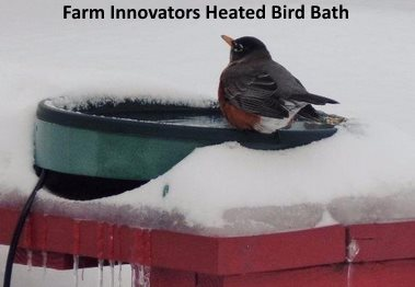 This heated bird bath can be mounted to deck or post or placed on the ground with the attached legs.
