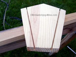 hopper bird feeder plans kerf