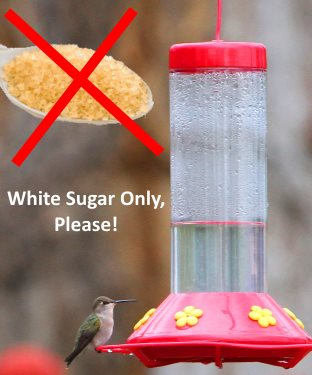 don't use raw sugar or brown sugar in your hummingbird food recipe