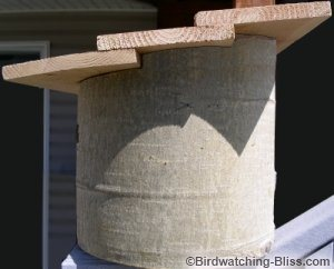 how to build a log bird house - this one was made from an aspen log