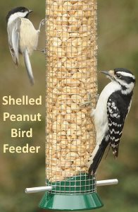 shelled peanut bird feeder attracts smaller birds