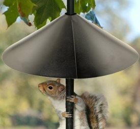 best squirrel baffle for bird feeders