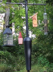 squirrel proof bird feeder pole and baffle