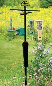 squirrel proof bird feeder pole