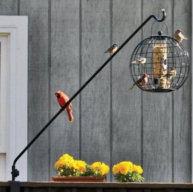 squirrel proof feeder pole
