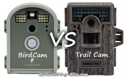 trail camera vs birdcam