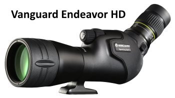 vanguard endeavor hd 20-60x65 spotting scope for birding