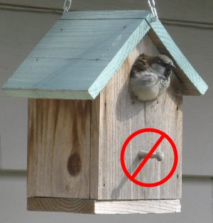 Do not put a perch on your wooden birdhouse