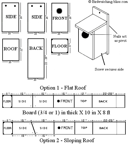American kestrel bird house plans