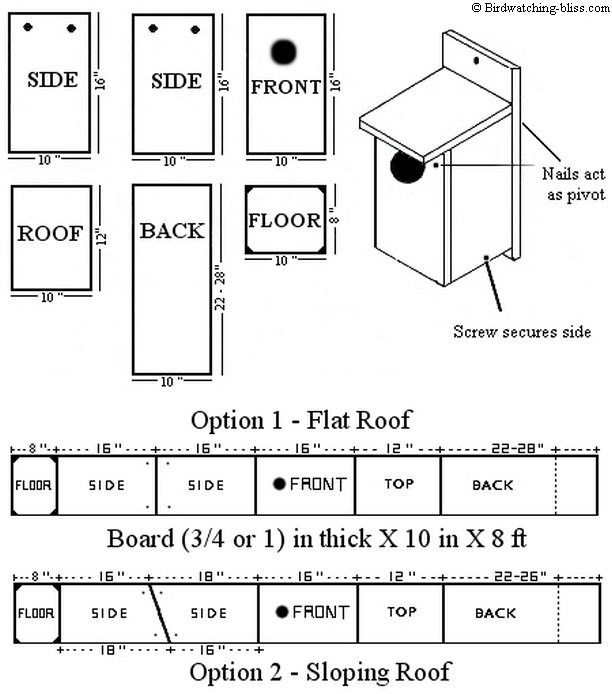 American kestrel nest box plans for American house plans free