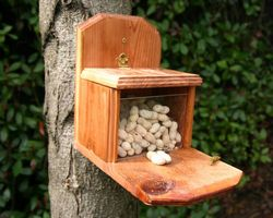 How To Make A Squirrel Feeder Youtube